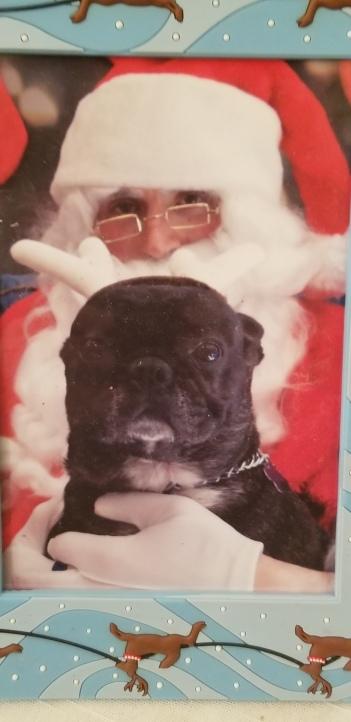 2010 reggie with santa